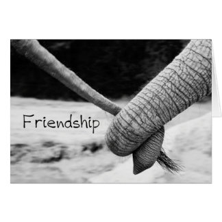 Friendship card - elephants trunk to tail
