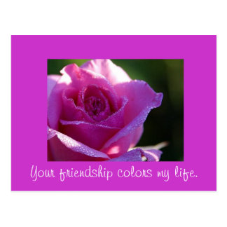Friendship Colors my Life Postcard