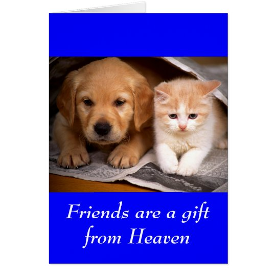 Friendship Golden Retriever Puppy  & Kitten  Card