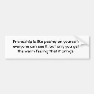Friendship is like peeing on yourself: everyone... bumper sticker