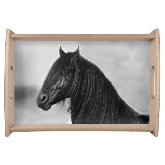 Friesian black stallion horse serving platters