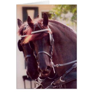 Friesian Carriage Horses Card