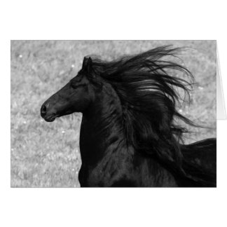Friesian Flying Horse Greeting Card