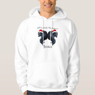 Friesian horse, black stallion beauty hoodie