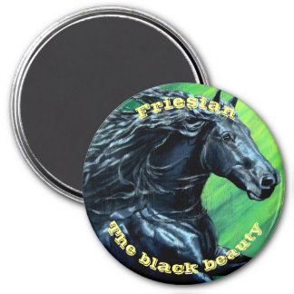 Friesian horse, black stallion, black beauty magnet