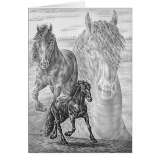 Friesian Horse Drawing by Kelli Swan Card