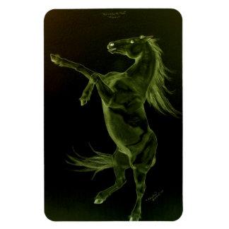 Friesian horse rearing Flexi Magnet