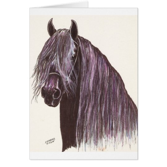 Friesian Horse Study Card