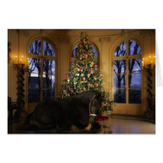Friesian Mare Christmas Card