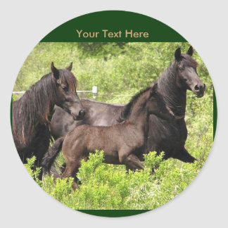 Friesian Mares Stickers #1