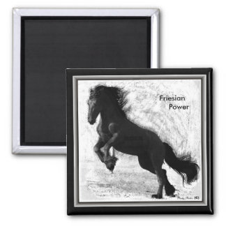 Friesian Power Magnet 2