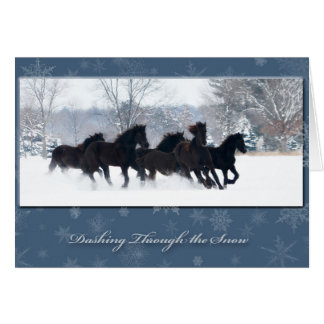 Friesian Yearlings Holiday Card