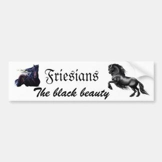 Friesians Bumper Sticker