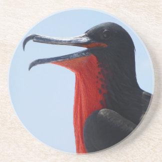 Frigate Bird Coaster