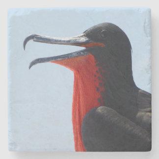Frigate Bird Stone Coaster