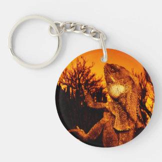 Frilled Neck Lizard on Burnt Tree Stump Key Ring
