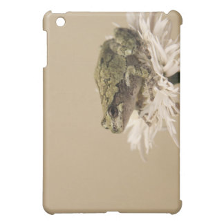 Frilly Frog iPad Mini Covers