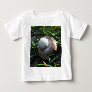 Fringed earthstar (Geastrum fimbriatum) Baby T-Shirt
