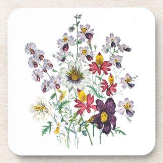 Fringeflowers and Velvet Trumpet Flowers Drink Coaster