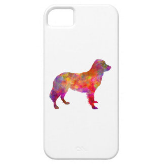 Frisian Pointer in watercolor iPhone 5 Cover