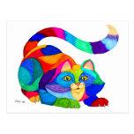 Frisky cat