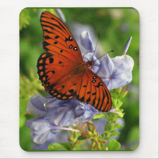 Fritillary Butterfly, Blue FLowers Mouse Pad