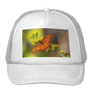 Fritillary Gulf Butterfly Gifts and Apparel Cap