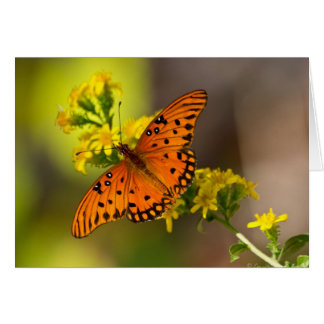 Fritillary Gulf Butterfly Gifts and Apparel Greeting Card