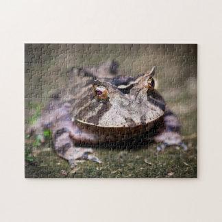 Frog 01 Digital Art - Photo Puzzle