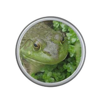 frog-1.jpg bluetooth speaker