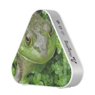 frog-1.jpg speaker