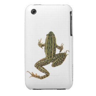 Frog 2 iPhone 3 case