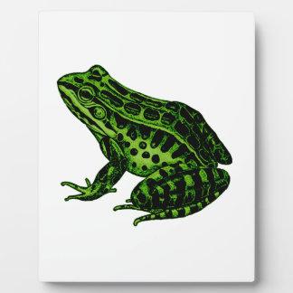Frog 2 plaque