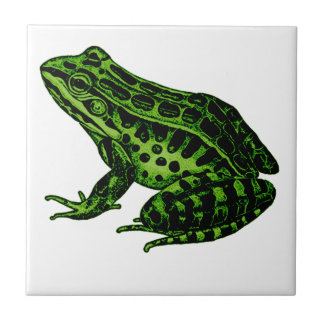 Frog 2 small square tile