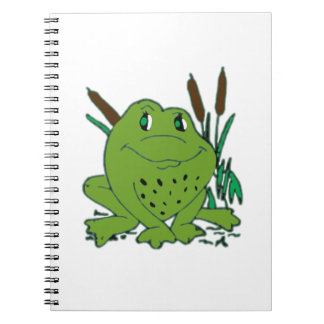 Frog 3 notebooks