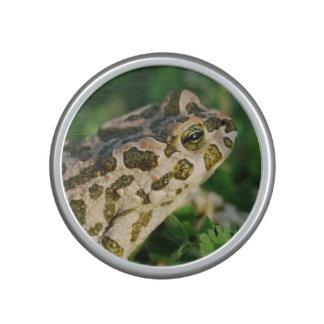 frog-51.jpg bluetooth speaker