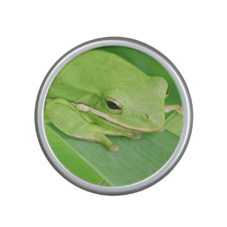frog-64.jpg speaker