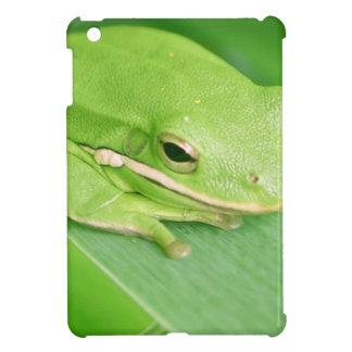 frog-64.jpg iPad mini cases