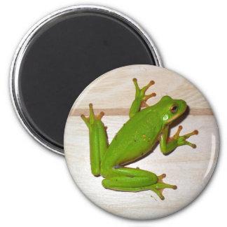 Frog! 6 Cm Round Magnet