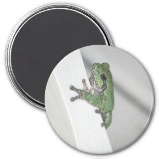 frog 7.5 cm round magnet