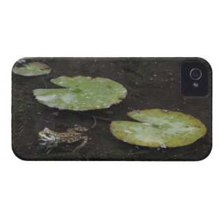 Frog and Lily Pads iPhone 4 Case-Mate Case