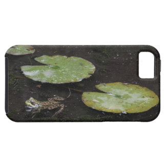 Frog and Lily Pads Tough iPhone 5 Case