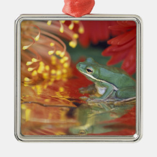 Frog and reflections among flowers. Credit as: Silver-Colored Square Decoration