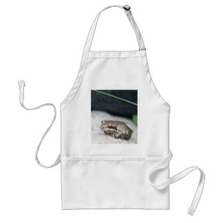 Frog! Aprons