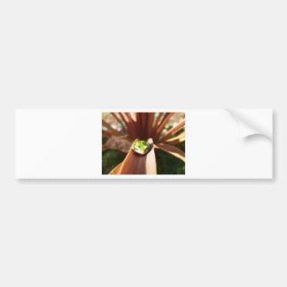 Frog bag bumper stickers