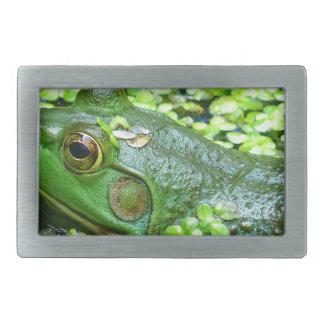 frog belt buckles
