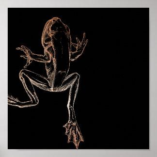 Frog Climbing Pink Rose Gold Blush Black Poster