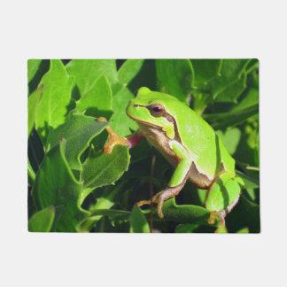 Frog Door Mat