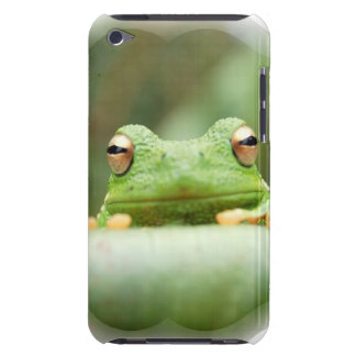 Frog Eyes iTouch Case