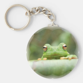 Frog Eyes Keychain